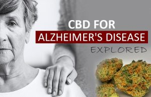 CBD Oil for Alzheimer's